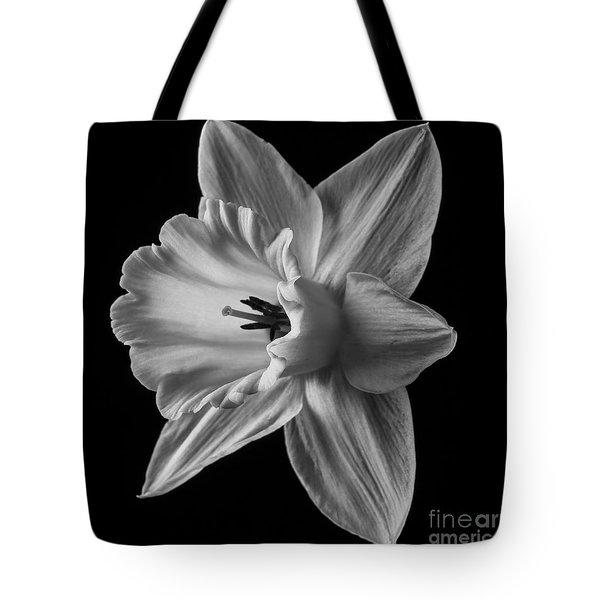 Narcissus Square Tote Bag
