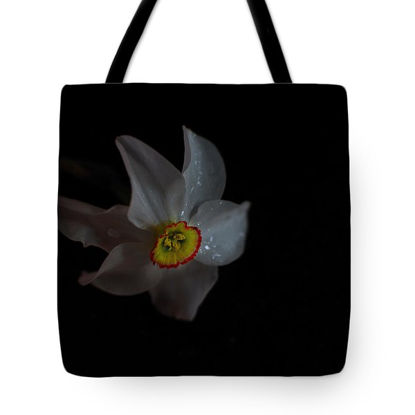 Tote Bag featuring the photograph Narcissus by Susan Capuano