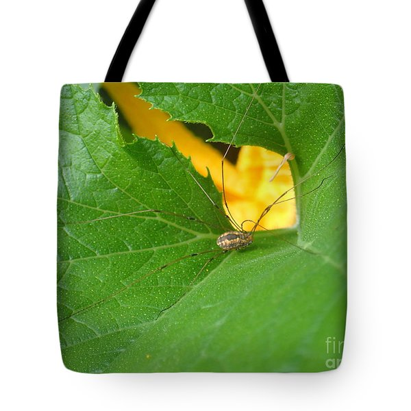 Narrow Leaf Gorge Tote Bag