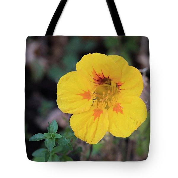 Nasturtium And Thyme Tote Bag