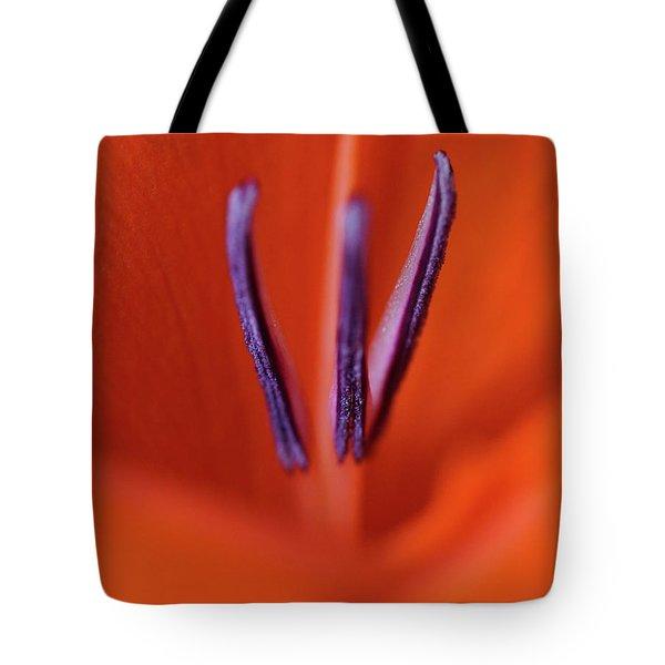 Natart 003 Tote Bag