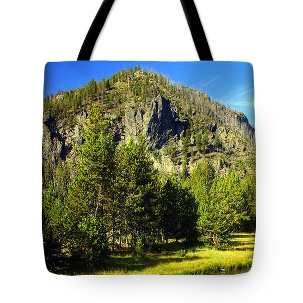 National Park Mountain Tote Bag by Marty Koch