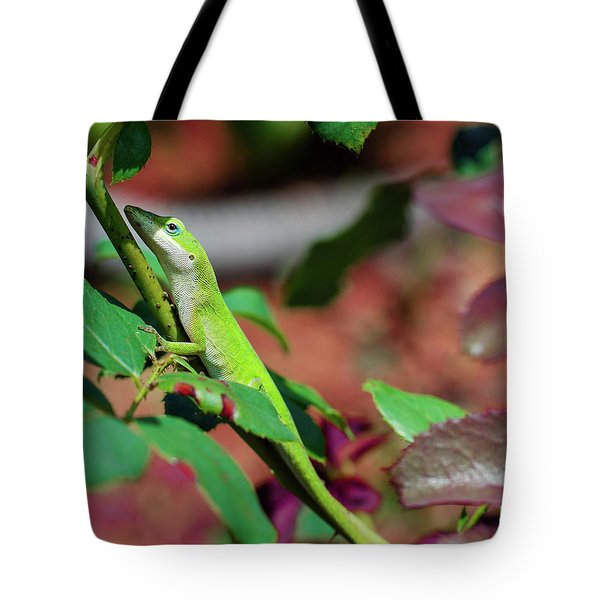 Native Anole Tote Bag by Stefanie Silva