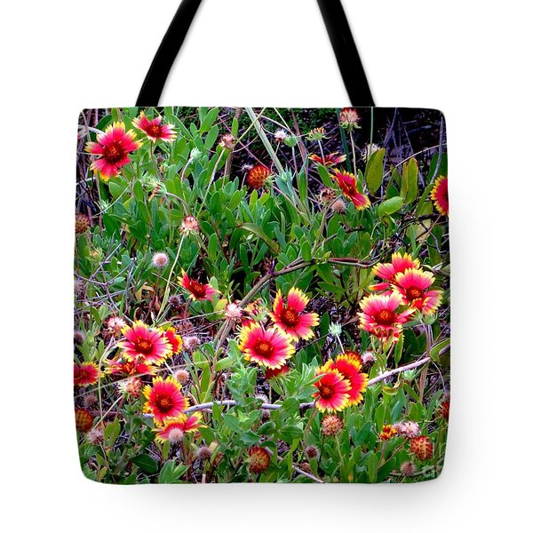 Native Blanket Flower Tote Bag by Tim Townsend