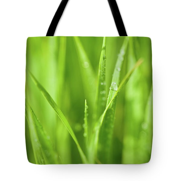 Native Prairie Grasses Tote Bag by Steve Gadomski