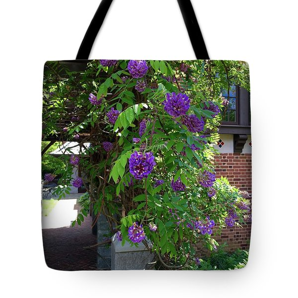 Native Wisteria Vine I Tote Bag