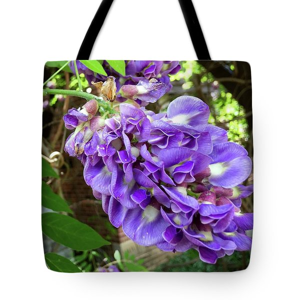 Native Wisteria Vine II Tote Bag