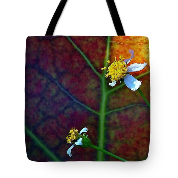 Natural 10 17g Tote Bag