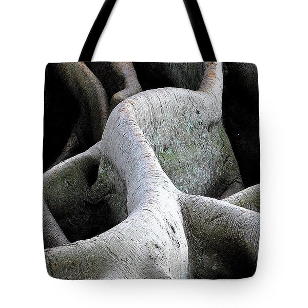 Natural 11 13 Tote Bag