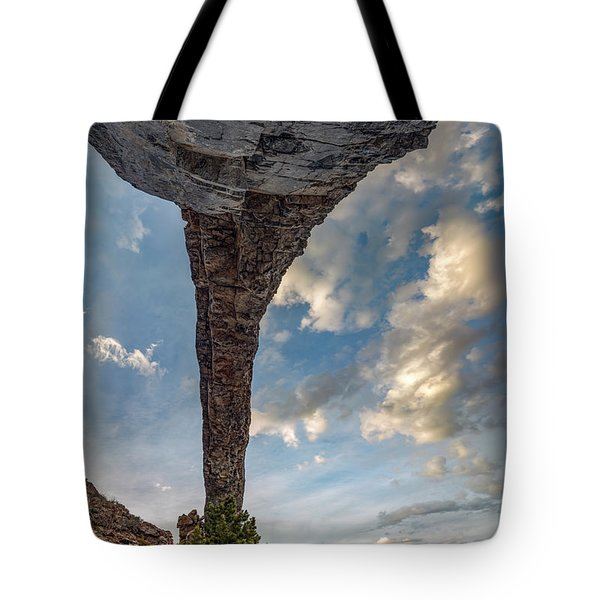 Natural Arch 2 Tote Bag by Leland D Howard