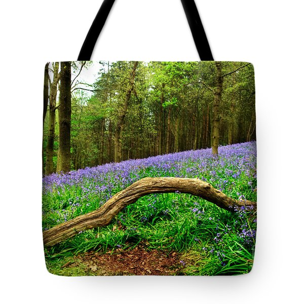 Natural Arch And Bluebells Tote Bag by John Edwards