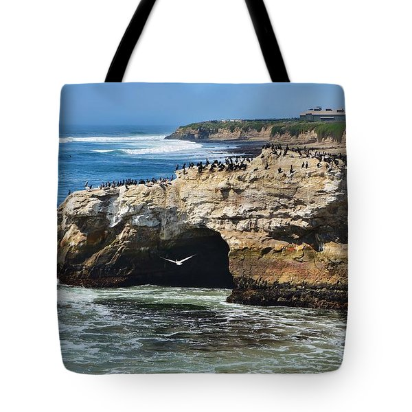 Natural Bridges Santa Cruz Tote Bag