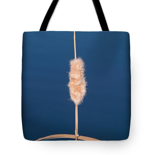 Tote Bag featuring the photograph Natural Cross by Monte Stevens