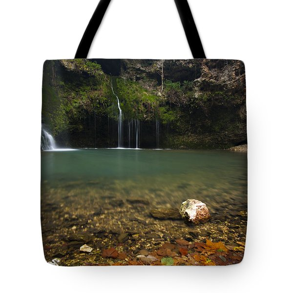 Natural Falls Tote Bag