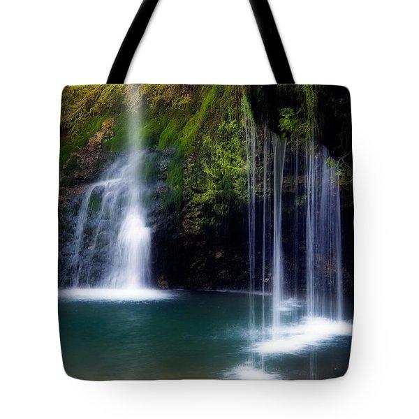 Natural Falls Tote Bag