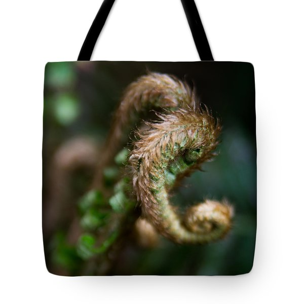Tote Bag featuring the photograph Natural Fiddlehead by Erin Kohlenberg