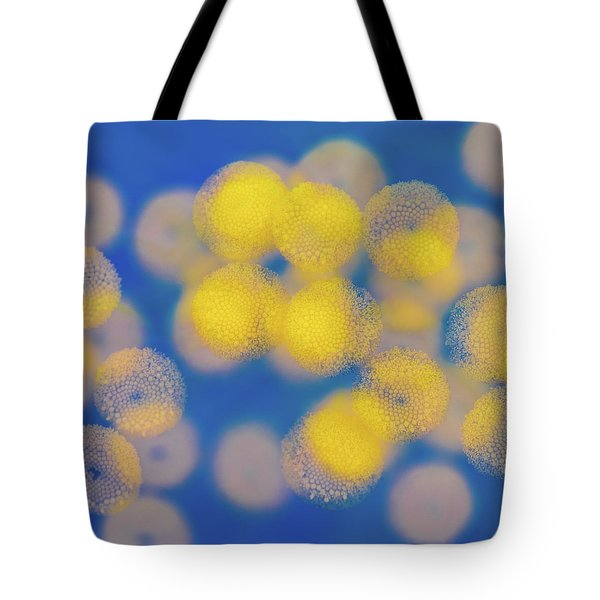 Tote Bag featuring the photograph Natural Lights by Ari Salmela
