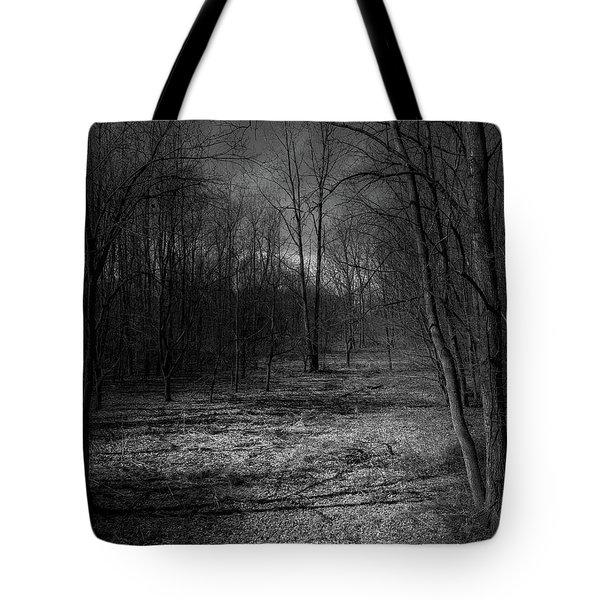 Natural Path Tote Bag