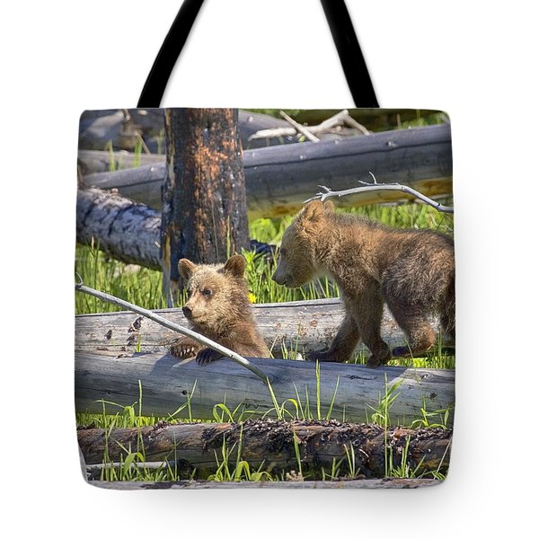 Tote Bag featuring the photograph Summer Fun by Aaron Whittemore