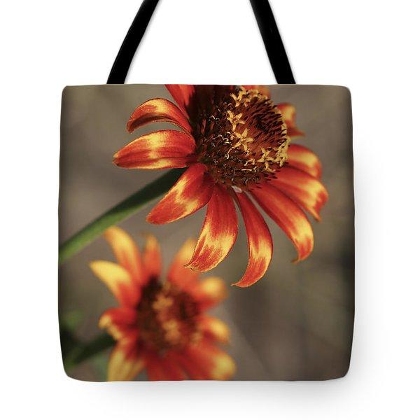 Natural Posing Beauty Tote Bag by Deborah Benoit