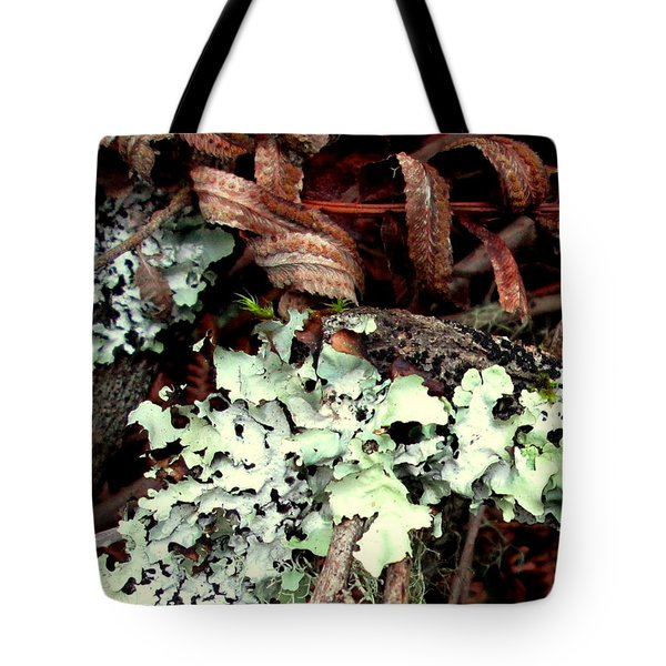 Natural Still Life #1 Tote Bag