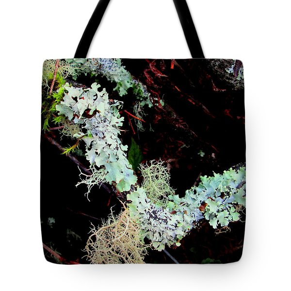 Natural Still Life #2 Tote Bag