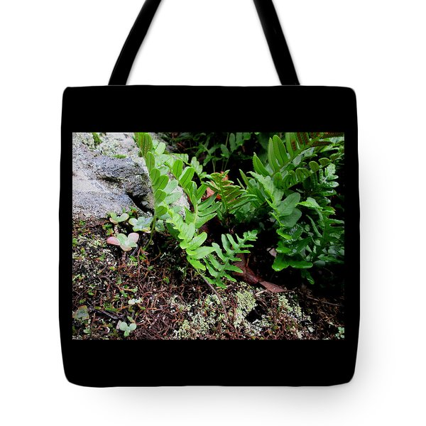 Natural Still Life #4 Tote Bag