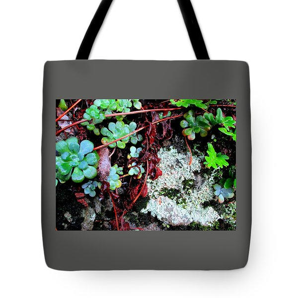 Natural Still Life #5 Tote Bag