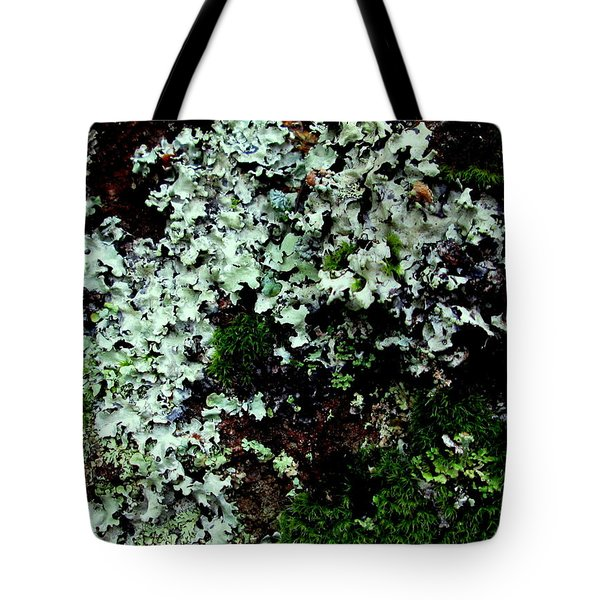 Natural Still Life #6 Tote Bag