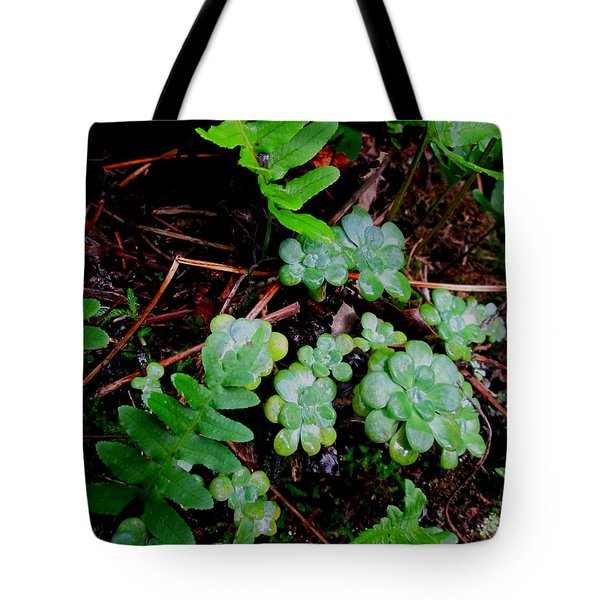 Natural Still Life #8 Tote Bag