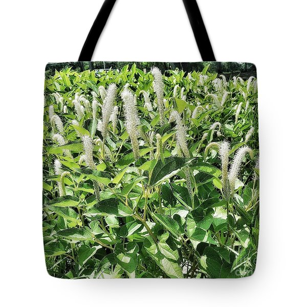 Natural Vision Tote Bag