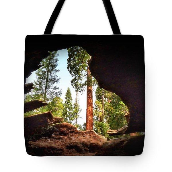 Natural Window Tote Bag