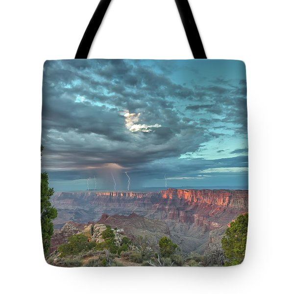 Natural Wonders Tote Bag by James Menzies