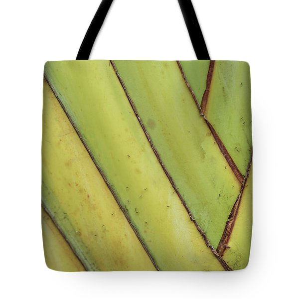 Nature Background, Green Leaves, Flowers In Natural Light And Sh Tote Bag