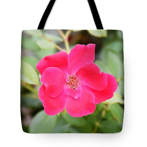 Tote Bag featuring the photograph Nature - Colorful Flower Gifts  by Ray Shrewsberry