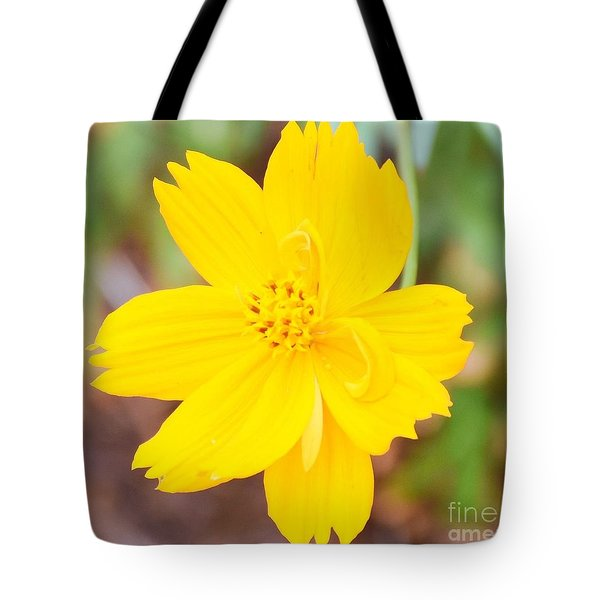 Tote Bag featuring the photograph Nature Colorful Flower Gifts - Yellow by Ray Shrewsberry