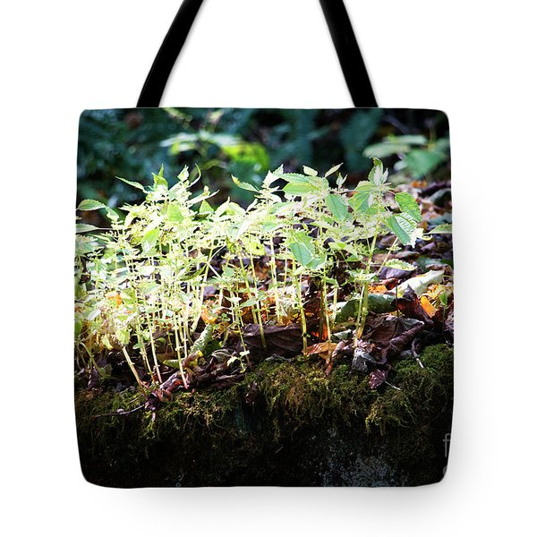 Nature Finds A Way Tote Bag by Rebecca Davis