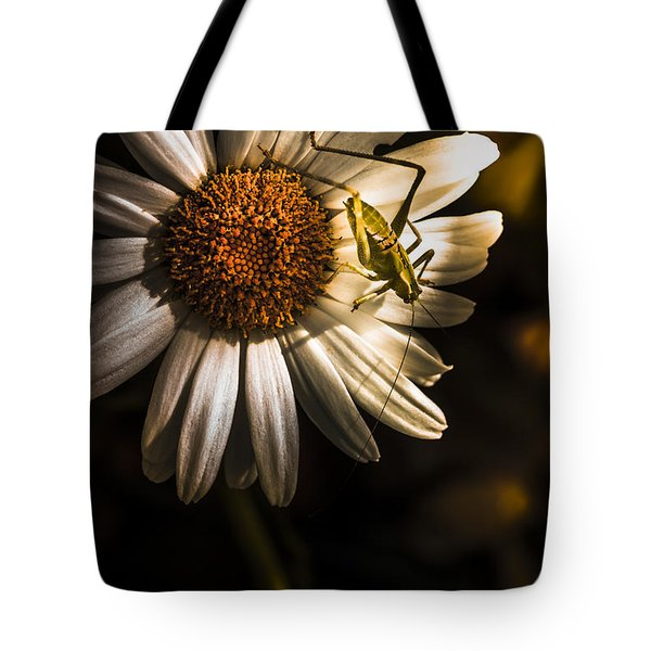 Nature Fine Art Summer Flower With Insect Tote Bag