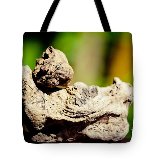 Nature Sculpture Artmif Tote Bag