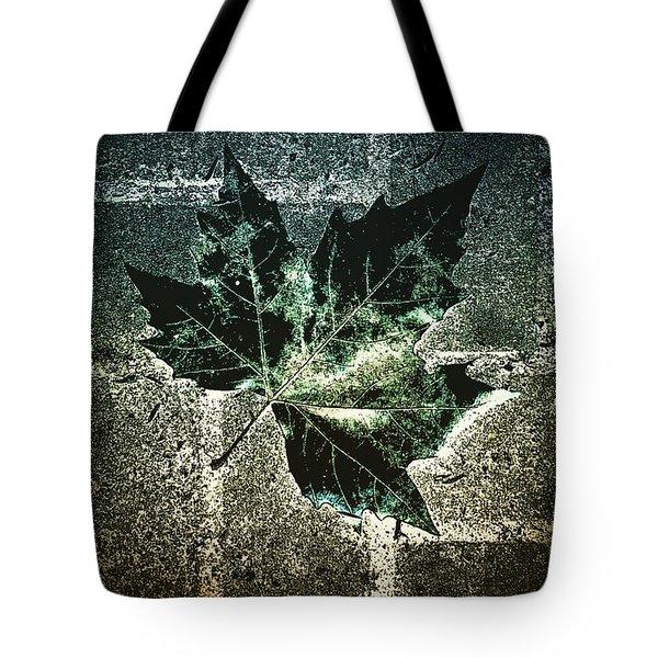 #nature #tagsforlikes #beautiful Tote Bag by Jason Michael Roust