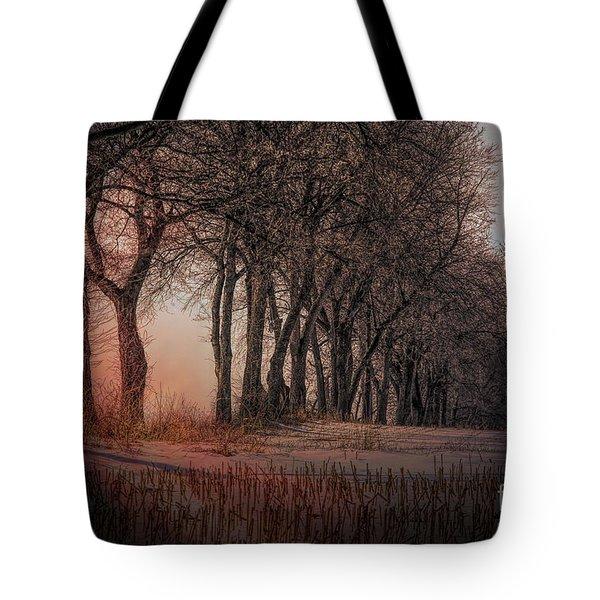Nature Winter Bare Trees Color  Tote Bag