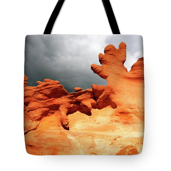 Tote Bag featuring the photograph Nature's Artistry Nevada 2 by Bob Christopher