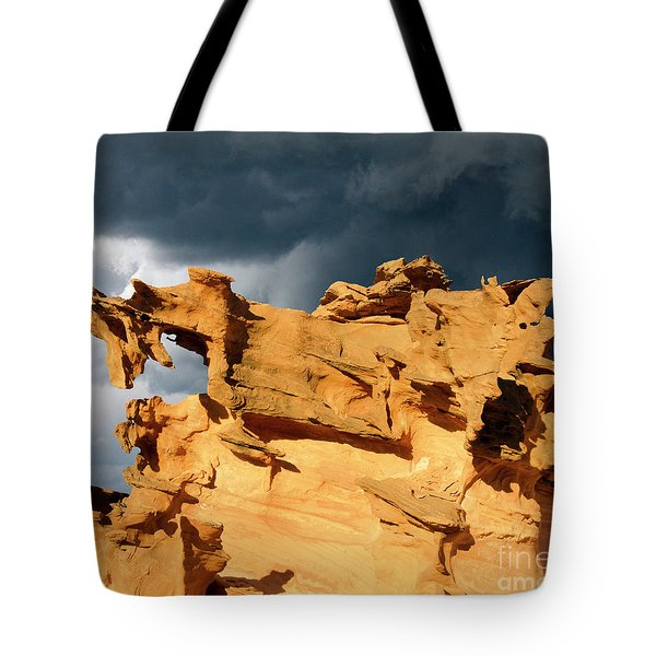 Tote Bag featuring the photograph Nature's Artistry Nevada 3 by Bob Christopher