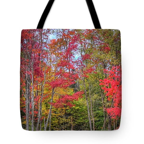 Tote Bag featuring the photograph Natures Autumn Palette by David Patterson