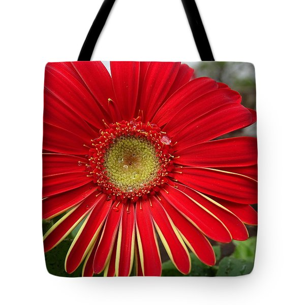 Natures Best Tote Bag