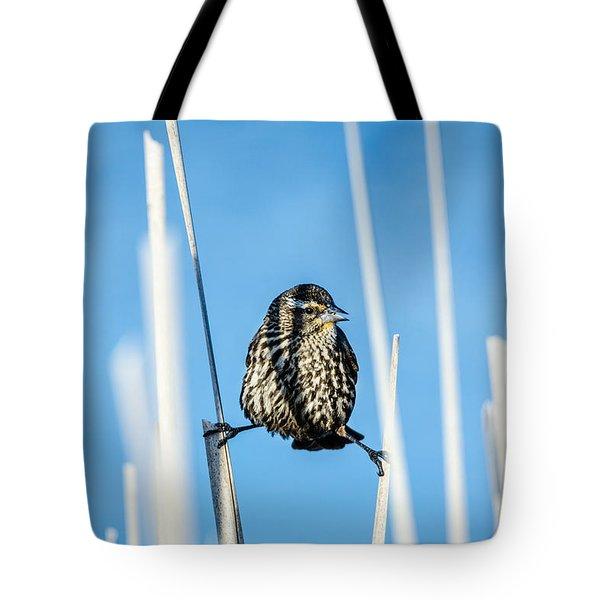 Nature's Circus Tote Bag