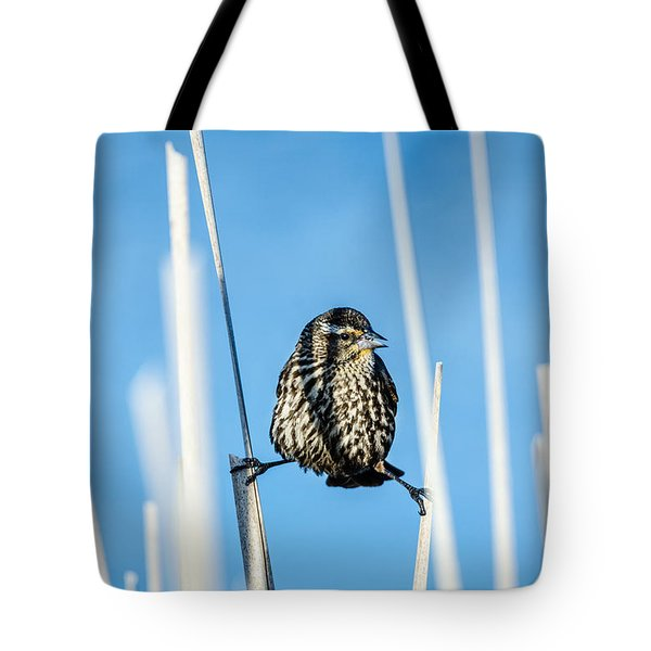 Nature's Circus Tote Bag