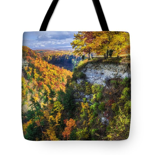 Natures Colors Tote Bag by Mark Papke