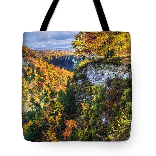 Natures Colors Tote Bag