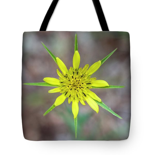 Nature's Compass Tote Bag
